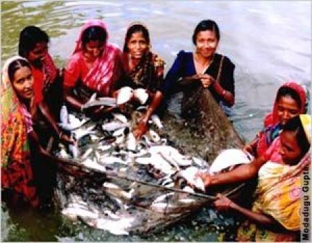 Fael Khair Program :Agro-Inputs Program for the SIDR cyclone Victim in Bangladesh