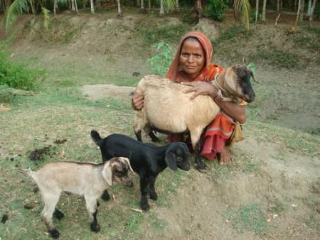 Jibon-O-Jibika (JOJ)-HKL, Bangladesh