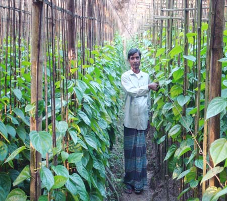Agriculture Development Program